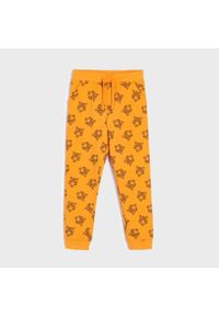 Pomarańczowe jeansy Sinsay
