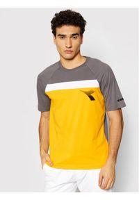 Diadora T-Shirt Ss Club 102.177063 Szary Regular Fit. Kolor: szary