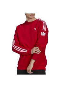 Adidas - adidas Adicolor 3D Trefoil 3-Stripes > GN3544. Materiał: polar, bawełna, poliester. Długość rękawa: raglanowy rękaw. Wzór: aplikacja. Styl: klasyczny