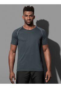 Szary t-shirt Stedman raglanowy rękaw, sportowy