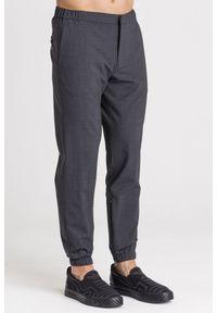 Szare spodnie Emporio Armani z aplikacjami