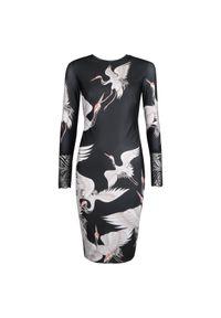 """Sugarbird Sukienka """"Kela"""". Materiał: tkanina, koronka. Długość rękawa: długi rękaw. Wzór: koronka. Typ sukienki: dopasowane"""
