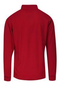 Expoman - Koszulka Polo, Czerwona, Longsleeve z Kołnierzykiem, Długi Rękaw, Męski -EXPOMAN. Okazja: na co dzień. Typ kołnierza: polo. Kolor: czerwony. Materiał: bawełna. Długość rękawa: długi rękaw. Długość: długie. Styl: casual