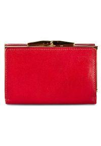 Czerwony portfel Stefania