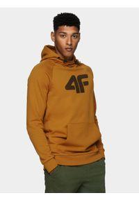 4f - Bluza męska. Typ kołnierza: kołnierzyk stójkowy, kaptur. Kolor: żółty. Materiał: bawełna, dzianina. Długość rękawa: raglanowy rękaw
