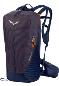 Plecak turystyczny Salewa MTN Trainer 25 l