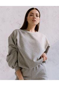DOLLINA - Szara bluza z bawełny. Okazja: na co dzień. Kolor: szary. Materiał: bawełna. Długość rękawa: długi rękaw. Długość: długie. Wzór: haft. Styl: casual
