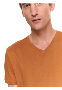 TOP SECRET - T-shirt krótki rękaw męski gładki. Kolor: brązowy. Długość rękawa: krótki rękaw. Długość: krótkie. Wzór: gładki