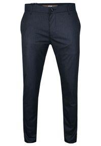 Niebieskie spodnie Tomy Walker w paski, na co dzień, casualowe