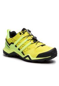 Żółte buty trekkingowe Adidas Adidas Terrex