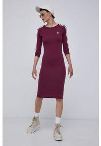 adidas Originals - Sukienka. Kolor: fioletowy. Materiał: bawełna, dzianina. Długość rękawa: raglanowy rękaw. Typ sukienki: dopasowane