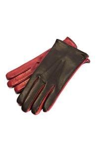 Cerruti 1881 Rękawiczki. Materiał: skóra. Wzór: aplikacja