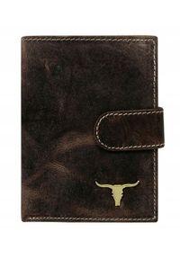 BUFFALO WILD - Portfel męski Buffalo Wild brązowy RM-06L-BAW. Kolor: brązowy. Materiał: skóra