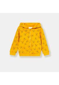 Żółta bluza Sinsay