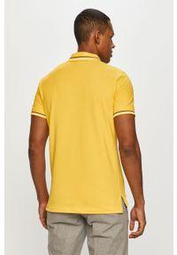 Geox - Polo. Okazja: na co dzień. Typ kołnierza: polo. Kolor: żółty. Materiał: włókno, dzianina, materiał. Długość: krótkie. Wzór: gładki. Styl: casual