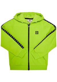 Zielona bluza Timberland