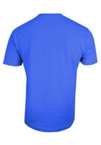 Stedman - Chabrowy Bawełniany T-Shirt w Serek, Męski Bez Nadruku -STEDMAN- Koszulka, Krótki Rękaw, V-neck. Okazja: na co dzień. Typ kołnierza: dekolt w serek. Kolor: niebieski. Materiał: bawełna. Długość rękawa: krótki rękaw. Długość: krótkie. Styl: casual