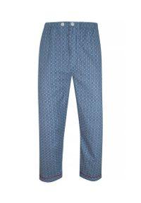 ForMax - Piżama Bawełniana, Niebieska, Flanelowa, Dwuczęściowa, Koszula Długi Rękaw, Długie Spodnie -FORMAX. Kolor: niebieski. Materiał: bawełna. Długość: długie