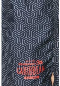 Henderson - Szorty kąpielowe. Kolor: niebieski. Materiał: tkanina