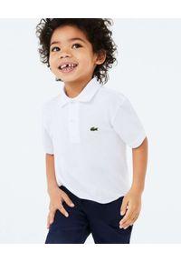 Lacoste - LACOSTE - Biała koszulka polo Regular Fit. Typ kołnierza: polo. Kolor: biały. Materiał: bawełna, prążkowany