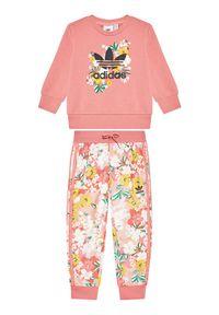 Adidas - adidas Dres HER Studio London Floral GN4211 Różowy Regular Fit. Kolor: różowy. Materiał: dresówka