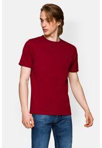 Lancerto - Koszulka Bordowa Daniel. Okazja: na co dzień. Kolor: czerwony. Materiał: włókno, materiał, bawełna. Wzór: aplikacja. Sezon: lato, jesień, wiosna, zima. Styl: klasyczny, casual