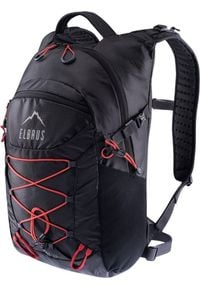 Plecak turystyczny Elbrus Lynx 25 l