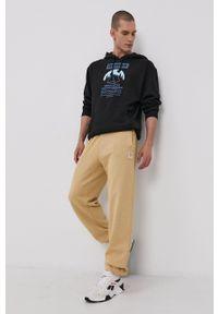 Reebok Classic - Bluza bawełniana. Okazja: na co dzień. Typ kołnierza: kaptur. Kolor: czarny. Materiał: bawełna. Wzór: nadruk. Styl: casual