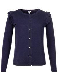 Niebieski sweter Primigi