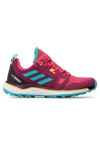 Czerwone buty do biegania Adidas Adidas Terrex, z cholewką