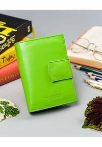 4U CAVALDI - Portfel damski zielony Cavaldi RD-05-GCL MINT. Kolor: zielony. Materiał: skóra
