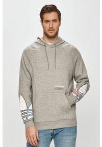 adidas Originals - Bluza bawełniana. Typ kołnierza: kaptur. Kolor: szary. Materiał: bawełna. Długość rękawa: raglanowy rękaw. Wzór: aplikacja