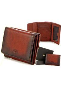 Czerwony portfel DAAG w kolorowe wzory