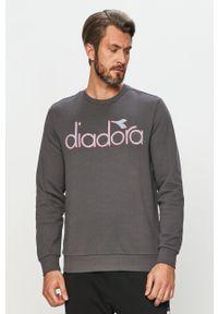 Szara bluza Diadora bez kaptura, na co dzień, casualowa, z aplikacjami
