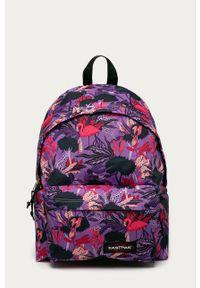 Fioletowy plecak Eastpak gładki