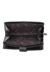 Wittchen - Damski portfel skórzany z zapięciem na napę. Kolor: czarny. Materiał: skóra