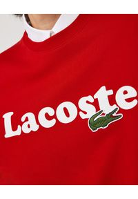 Lacoste - LACOSTE - Bawełniana bluza z logo. Okazja: na co dzień. Kolor: czerwony. Materiał: bawełna. Długość rękawa: długi rękaw. Długość: długie. Wzór: haft. Styl: casual, klasyczny, sportowy