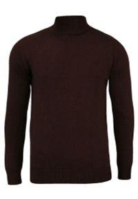 Brązowy sweter Brave Soul z klasycznym kołnierzykiem, na zimę, elegancki