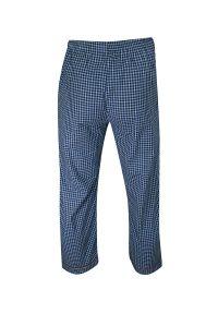 ForMax - Piżama Bawełniana Cienka, w Kratkę, Dwuczęściowa, Koszula Długi Rękaw, Długie Spodnie FORMAX. Kolor: niebieski. Materiał: bawełna. Długość: długie. Wzór: kratka