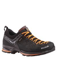 Buty męskie trekkingowe Salewa Mountain Trainer 2 GTX. Zapięcie: sznurówki. Materiał: zamsz, skóra, materiał, guma. Szerokość cholewki: normalna. Technologia: Gore-Tex. Sport: wspinaczka, turystyka piesza