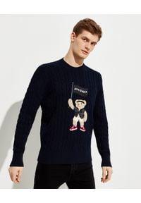 PALM ANGELS - Grantowy sweter Pirate Bear. Kolor: niebieski. Materiał: prążkowany, bawełna. Długość rękawa: długi rękaw. Długość: długie. Wzór: aplikacja. Styl: klasyczny