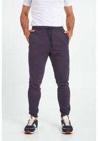 Trussardi Jeans - SPODNIE DRESOWE TRUSSARDI. Okazja: na co dzień. Materiał: dresówka. Wzór: nadruk, aplikacja. Styl: casual