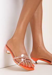 Renee - Pomarańczowe Klapki Aswanet. Kolor: pomarańczowy