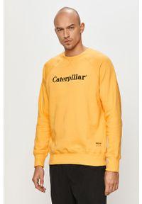 Żółta bluza nierozpinana CATerpillar na co dzień, z nadrukiem