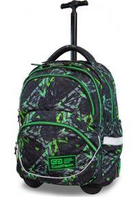Zielony plecak Patio młodzieżowy
