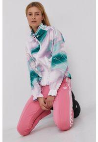 adidas Originals - Spodnie. Kolor: różowy. Materiał: dzianina, materiał