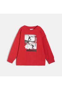Czerwona bluza Sinsay