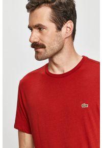 Brązowy t-shirt Lacoste casualowy, na co dzień