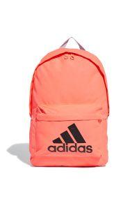 Adidas - ADIDAS CLASSIC BIG LOGO > FT8763. Materiał: poliester. Wzór: aplikacja. Styl: elegancki, casual