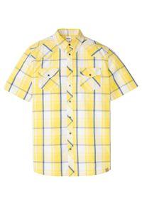 Koszula z krótkim rękawem bonprix biało-żółty ananasowy w kratę. Kolor: biały. Długość rękawa: krótki rękaw. Długość: krótkie